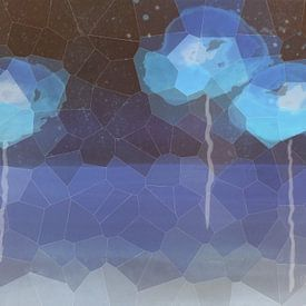 Klaprozen - Blauwe klaproos van Christine Nöhmeier