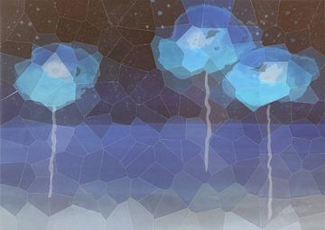 Coquelicots - Pavot bleu sur Christine Nöhmeier