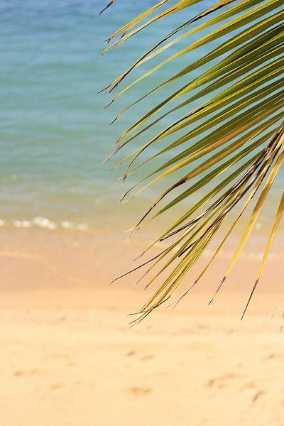 Tropisch strand van Lisette van Oosterhout