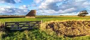 Schapenboet Texel nabij De Hoge Berg
