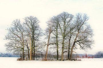 Bomengroep bij Kasteel Groeneveld van Bart Uijterlinde