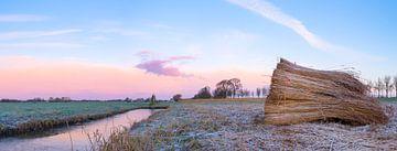 Lever de soleil d'hiver au-dessus du Zwartendijk dans la région d'IJsseldelta