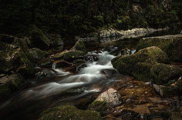 Stromend beekje in de Vogezen | Frankrijk van Melvin Fotografie