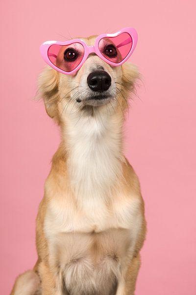 Door een roze bril von Elles Rijsdijk