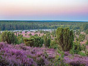 Lüneburger Heide, Totengrund