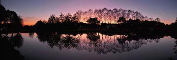 Panorama reflectie bomen in water van