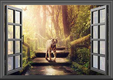einen Tiger aus dem Fenster beobachten von Bert Hooijer