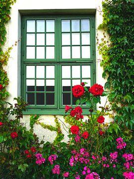 Stillleben grünes Blumenfenster von Thomas Zacharias