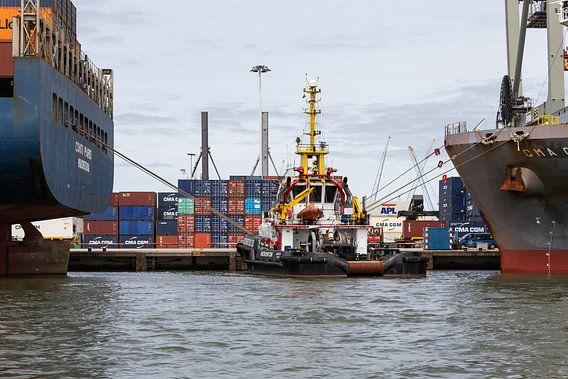 De sleepboot in de Rotterdamse Waalhaven