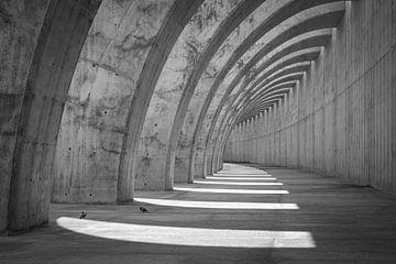 Gebogene, sich wiederholende Formen in Beton von Pierre Verhoeven