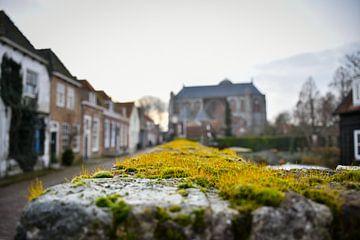 Moos auf alter Mauer in Festungsstadt von bart hartman
