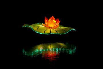 Lotusbloem van licht van Ton van Buuren