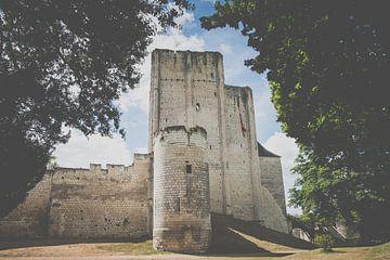 Burg und Bergfried der französischen Stadt Loches von Fotografiecor .nl