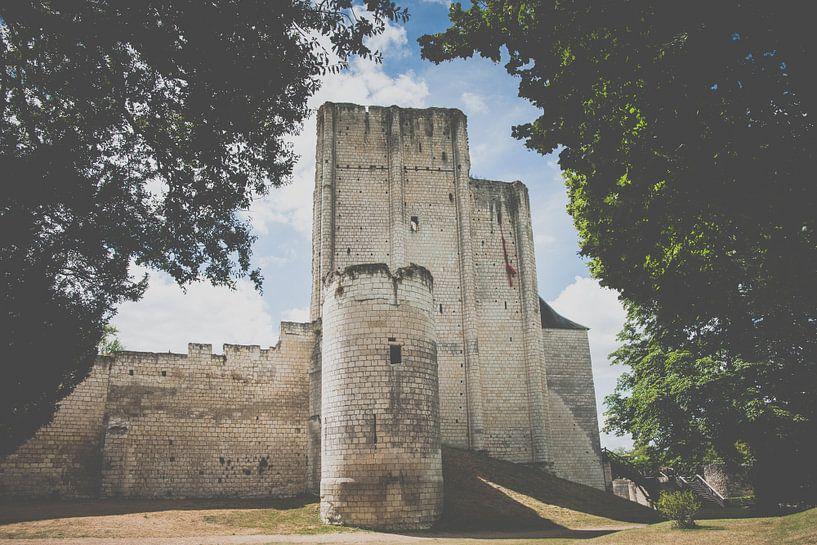 Kasteel en donjon van de Franse stad van loches, Frankrijk, Loire van Fotografiecor .nl