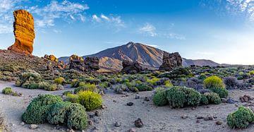 Los Roques de Garcia op Tenerife van Easycopters