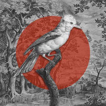 Jay Bird von Marja van den Hurk