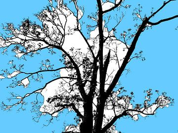 Tree Magic 65 von MoArt (Maurice Heuts)