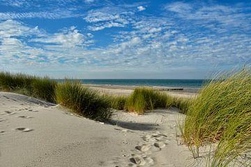 beach of Renesse sur Claudia Moeckel
