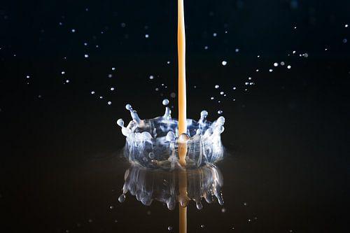 Witte kroon van Dennis van de Water