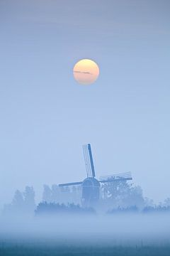 Misty Morning Blues von Halma Fotografie