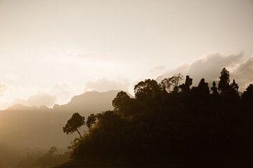 Zonsopgang Khao Sok national park | Thailand Azië van Wianda Bongen