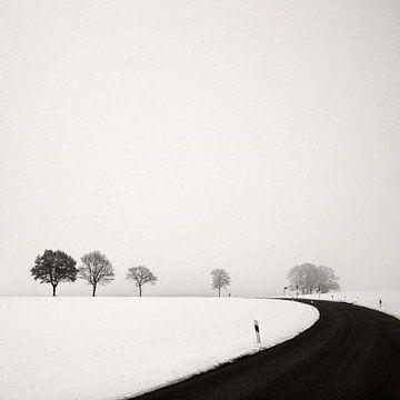 Winterse weg van Lena Weisbek