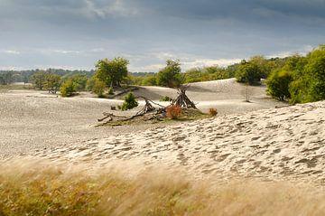 Niederländische Sahara von Mark Bolijn