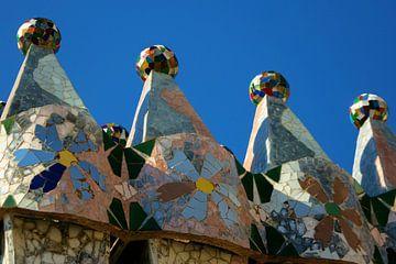 Gaudi Huis,Casa Batlló, Barcelona van Tessa Louwerens
