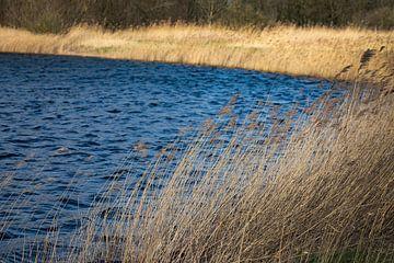 Aan de Waterkant van Petro Luft