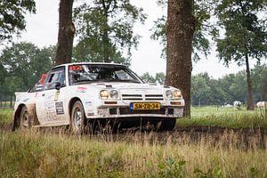 Eurol Hellendoorn Rally 2