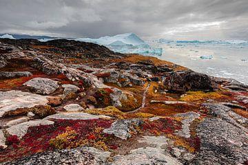Rode rotsen op de kust van een ijsrotsen baai in Groenland van Martijn Smeets