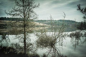 Wasserlandschaft von Kitty Stevens