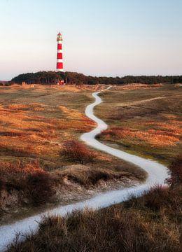 De vuurtoren van Ameland, de Bornrif. van Fotografie Egmond