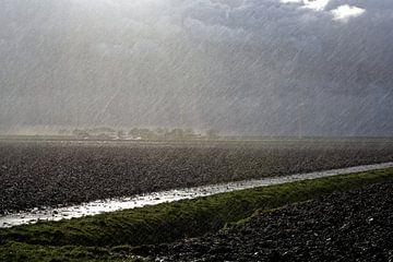 Na regen komt zonneschijn van