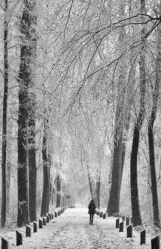 Sneeuw wandeling von Michel Van Zanten