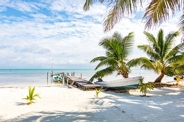 Stranded boat on a tropical caribbean beach - Belize von Michiel Ton