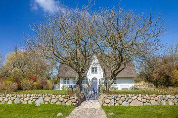 Hübsches Reetdachhaus mit Friesenwall in Morsum, Sylt von Christian Müringer