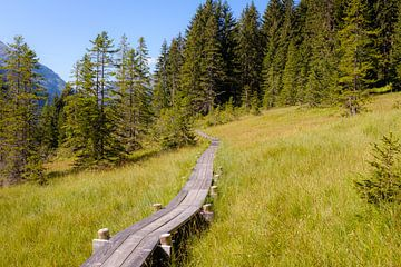 Wandelpad in de Alpen van Johan Vanbockryck