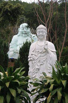 Happy Buddha van Mr Greybeard