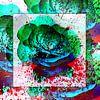 In den Farbtopf gefallen von Gertrud Scheffler Miniaturansicht