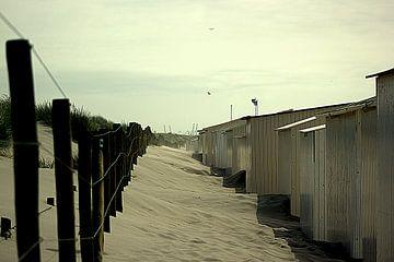Strand van Francisco de Almeida