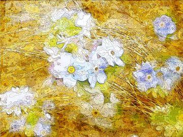 Blütenzart 1 von Claudia Gründler