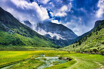 Grüne Wiese am Fuße eines Berges von Bart Nikkels
