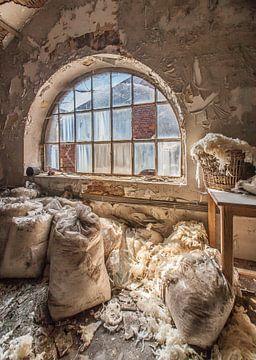 Verlassene Wolfsfabrik von Olivier Van Cauwelaert