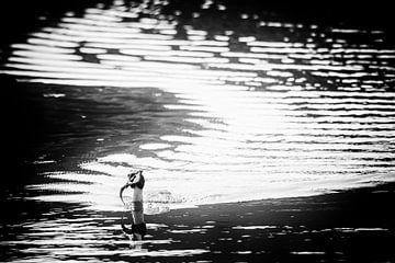 Haubentaucher mit Fisch (schwarz und weiß) von Fotografie Jeronimo