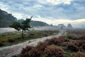 Landschap met heide van Henk Elshout