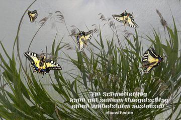Chaos Theory - Een vlinder kan ..... van Christine Nöhmeier