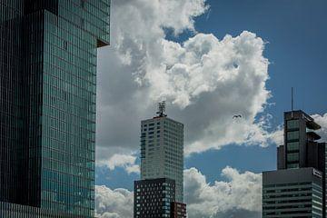 Architectuur kop van Zuid Rotterdam van Andy Van Tilborg