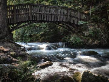Oker Wildwasser auf der Liebesinsel von Dirk Bartschat