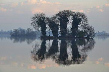 Reeuwijkse Plassen na de mist von Martin Keve